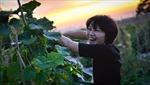 Xu hướng về nông thôn sống tại Hàn Quốc