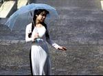 Các tỉnh Bắc và Trung Trung Bộ mưa to