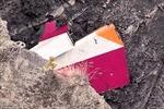 Những manh mối đầu tiên vụ máy bay rơi ở Pháp