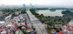 Áp lực đô thị đang đè nặng lên cây xanh Hà Nội