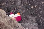 Điện chia buồn vụ tai nạn của hãng Hàng không Đức Germanwings