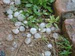 Đề phòng tố lốc, mưa đá ở Đông Bắc Bộ, Bắc Trung Bộ