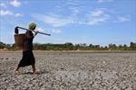 Sau 5 tháng hạn, Đắk Lắk đón trận mưa vàng