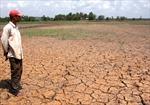 Chung sức ứng phó với biến đổi khí hậu