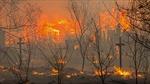 Rừng Siberia chìm trong biển lửa