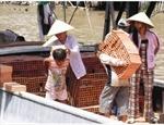 Cần ngăn chặn đưa trẻ em đi lao động trái phép ở ngoại tỉnh