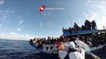 Italy cứu hơn 500 người di cư trái phép trên biển