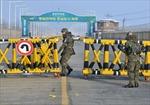 Các công ty Hàn Quốc 'mắc kẹt'
