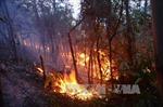 Xảy ra cháy tại một số địa phương