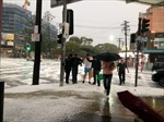 Mưa đá phủ trắng đường phố Sydney