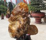Triển lãm đá cảnh - Đá phong thủy Việt Nam