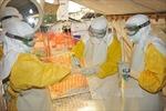 WHO công bố kế hoạch diệt trừ bệnh Ebola