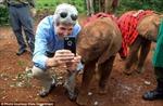 Ngoại trưởng Mỹ thích thú chụp ảnh với voi