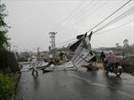 Liên tiếp xảy ra lốc xoáy tại Nghệ An