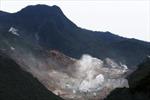 Cảnh báo hoạt động núi lửa tại Hakone