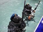 Xem 'lính' hải cẩu bắn súng mừng Ngày Chiến thắng