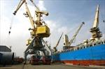 Mở rộng thị phần vận tải biển