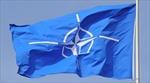 Hội đồng Nghị viện NATO họp tại Hungary