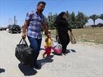 Mỹ hỗ trợ lực lượng Iraq giành lại Ramadi từ tay IS