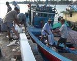 Ngư dân Quảng Nam tự tin vươn khơi bám biển