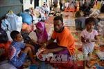 Campuchia để ngỏ khả năng tiếp nhận người Rohingya di cư
