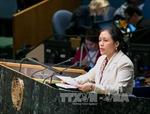 Việt Nam cam kết thực hiện nghiêm NPT