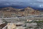 Nếu Palmyra về với cát bụi...