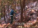 Thanh Hóa khống chế được vụ cháy rừng thông