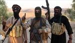Ngày càng nhiều người nước ngoài tham gia nhóm khủng bố