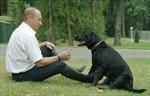 Tổng thống Putin tặng chó con cho bé gái