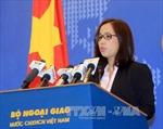 Việt Nam cử tàu cứu nạn ra Hoàng Sa là hoạt động hợp pháp