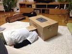 Sáng tạo phòng chiếu di động từ thùng bìa cát tông