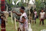 Lễ hội cúng thần lúa của đồng bào Mạ
