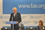 Việt Nam tham dự phiên họp lần thứ 39 của Đại hội đồng FAO