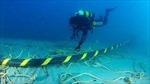 Khắc phục sự cố cáp quang biển xong sớm trước 1 tháng
