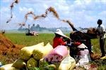 Cử tri đề nghị có chính sách đồng bộ phát triển bền vững nông nghiệp