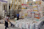 Xuất khẩu gạo nhiều khó khăn