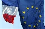 Nhiều người Pháp vẫn bác bỏ Hiến pháp châu Âu