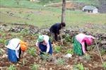 Chương trình giảm nghèo cần tập trung vào vùng đặc biệt khó khăn