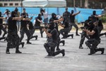 Chính phủ Palestine có thể từ chức trong 24 giờ tới