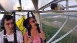 Mèo bay trên máy bay hạng nhẹ