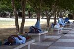 Gần 700 người tử vong do nắng nóng tại Pakistan