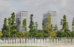Xây dựng đô thị tăng trưởng xanh