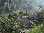 Tạo sinh kế cho đồng bào vùng lõi bảo vệ rừng