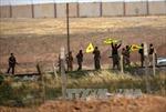 Lực lượng người Kurd tái chiếm thị trấn Tal Abyad