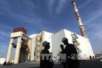 IAEA hy vọng sớm làm sáng tỏ chương trình hạt nhân của Iran