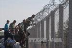 Hàng rào thép gai – Giải pháp khủng hoảng nhập cư?