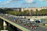 Nông dân Pháp biểu tình lớn trên đường phố Paris