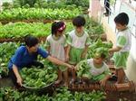 Du lịch học đường – Giải pháp tuyệt vời cho sự quá tải trong học tập