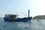 Tàu cá và 12 ngư dân Bình Định bị nạn vào bờ an toàn